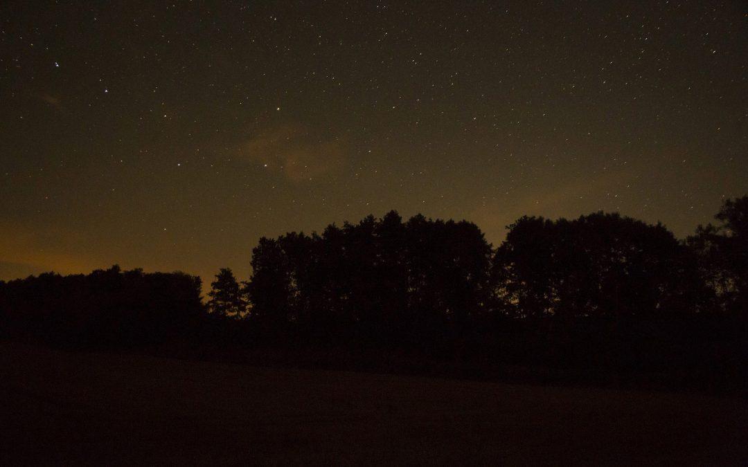 Night observation